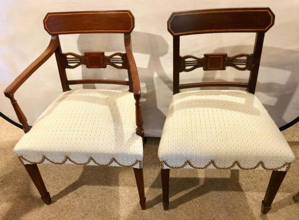 Luxurious dining room chairs
